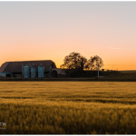 barn at sunset for article on CLass Q and development outside settlement boundary