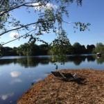 The beautiful wildlife reserve