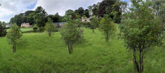 Architect designed single dwelling, Stroud