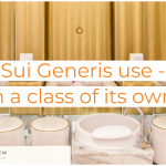 Sui Generis Change of Use application