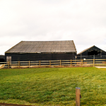 conversion of 3 barns in countryside to residential housing and annexe