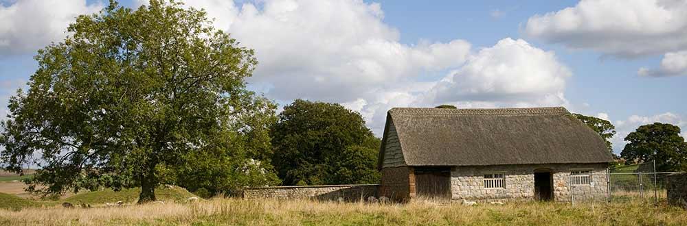 rural1.jpg